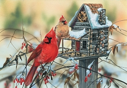 30624 - Cardinal's Rustic Retreat (500 stukjes)